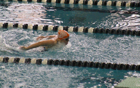 Swimming looks to build on last year's success