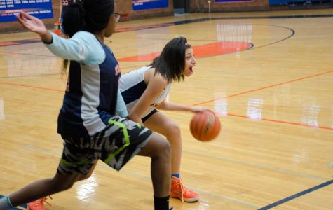 Girls basketball will face best teams in state this season