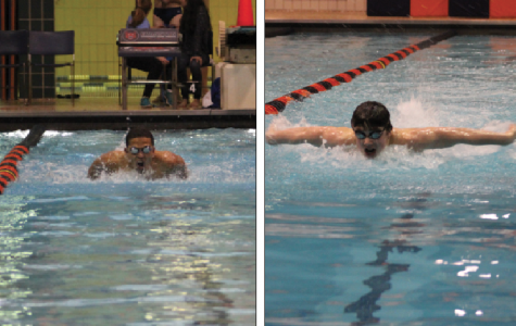 Boys swimming preps for conference in regular season finale