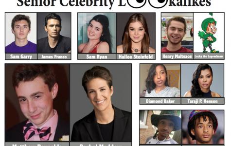 Senior celebrity doppelgangers