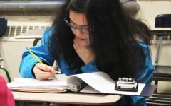 Olivia Larsen, sophomore, works on a geometry problem at practice.