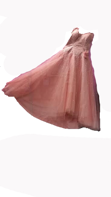 Dreams+Delivered+comes+to+Evanston