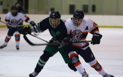 Boys hockey vs Notre Dame