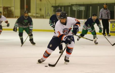 Boys hockey hangs its hat on a successful season