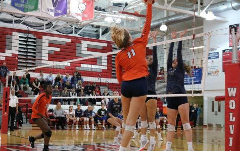 After upset win, volleyball bows out in second round of playoffs