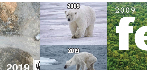 #10YearChallenge: Climate Change Edition
