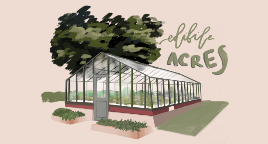 Edible+Acres+at+ETHS+serves+as+an+example+of+what+can+be+done+within+communities+to+fight+back+against+environmental+racism.