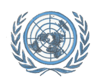Model U.N. adapts systems to fit remote year
